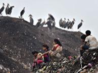 Сортировщики мусора на большой свалке в Гувахати, Индия