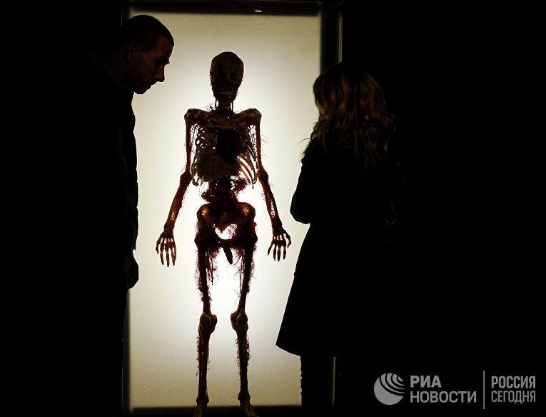 """Посетители на выставке """"Тайны тела. Вселенная внутри"""""""
