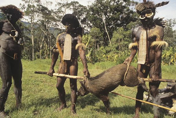 Индейцы племени дани с добычей