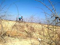 Велосипедист в городе Ахваза, Иран