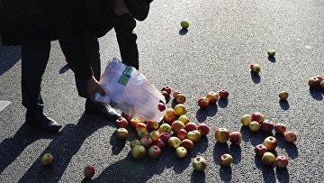 Акция протеста фермеров и садоводов Польши прошла в Варшаве