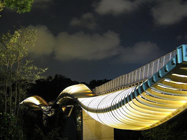 Пешеходный мост Хендерсон Уэйвз в Сингапуре