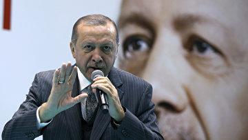 Президент Турции Тайип Эрдоган в Турции. 28 января 2018
