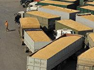 Работа зернового терминала в порту Новороссийска