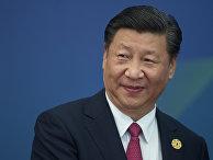 Председатель КНР Си Цзиньпин перед встречей лидеров экономик форума АТЭС во Вьетнаме. 10 ноября 2017