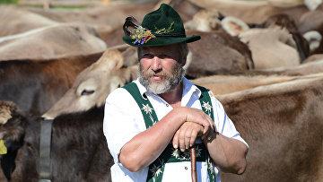 Фермер в немецких Альпах