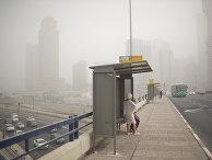 Остановка общественного транспорта во время песчаной бури в Тель-Авиве