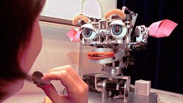 Робот Kismet в лаборатории искусственного интеллекта Массачусетского технологического института в Кембридже