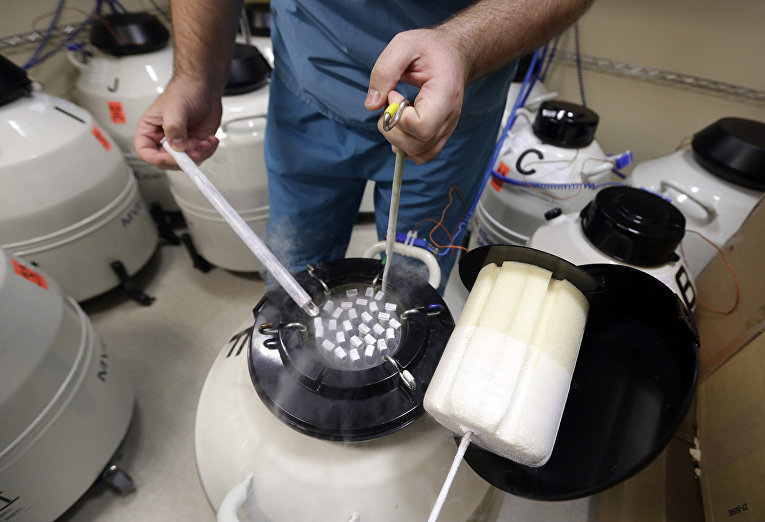 Образцы замороженной спермы в ассоциации репродуктивной медицины в Нью-Йорке