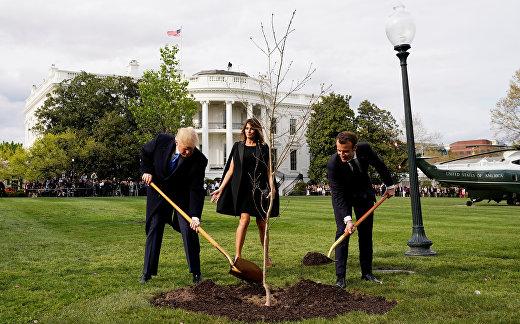 Президент США Дональд Трамп, президент Франции Эммануэль Макрон сажают дуб на лужайке Белого дома в Вашингтоне