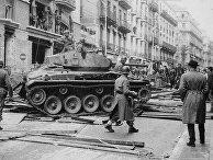 Французская армия подавляет вспышку насилия в Алжире
