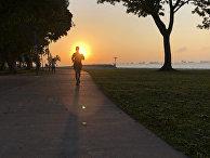Бегун на закате