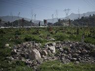 Сирийские беженцы в турецкой провинции Измир