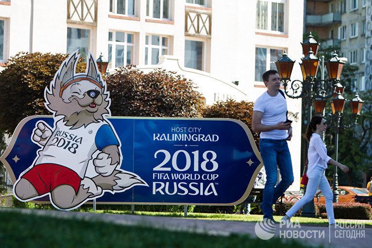 Подготовка Калининграда к ЧМ-2018 по футболу
