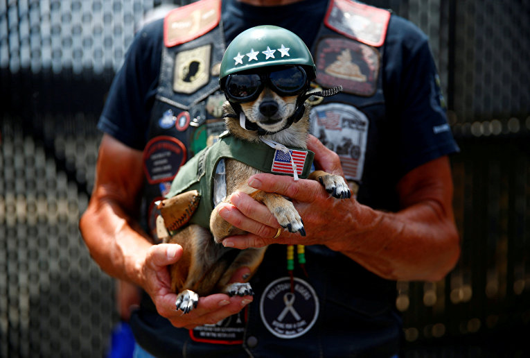 Тысячи ветеранов и их сторонников принимают участие в 31-м ежегодном Мотопробеге Rolling Thunder motorcycle и дне памяти Ride for Freedom