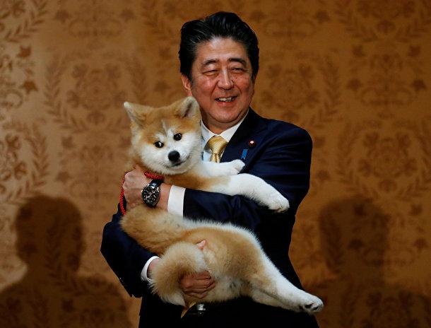 Премьер-министр Японии Синдзо Абэ со щенком Акита-ину