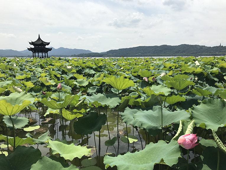 Озеро Сиху в китайском городе Ханчжоу