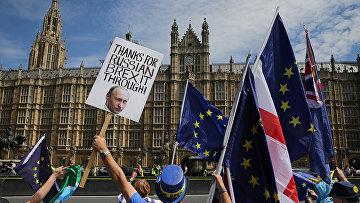 Противники выхода Великобритании из ЕС во время акции протеста