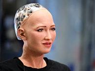 """Человекоподобный робот София, разработанный специалистом фирмы Hanson Robotics Дэвидом Хэнсоном на международном форуме """"Открытые инновации - 2017 """" в Москве"""