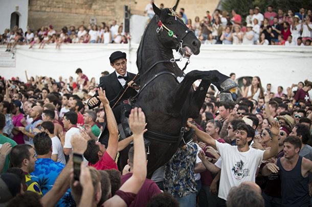Лошадь во время традиционного фестиваля Сан-Хуан