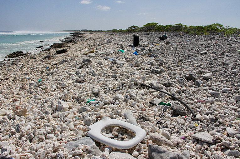 заиметь мусорный остров в тихом океане фото очень закрытым человеком