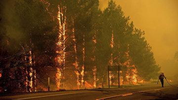 Пожарный борется с лесным пожаром в Калифорнии