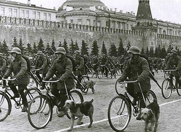 Советские противотанковые собаки