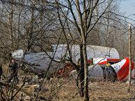 Обломки самолета Ту-154, упавшего в районе Смоленска