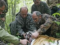 Глава правительства РФ Владимир Путин посетил Уссурийский заповедник