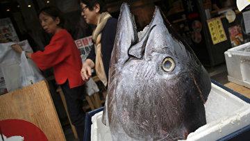 Посетители рыбного ресторана