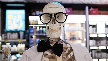 Искусственный скелет человека в магазине
