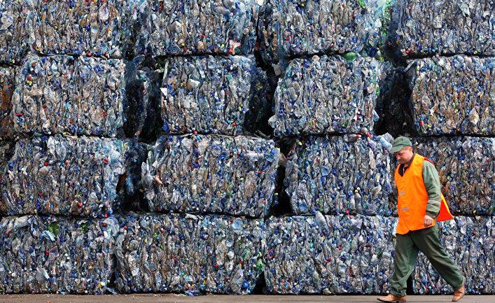 The Guardian (Великобритания): микроорганизм, который питается токсичным пластиком