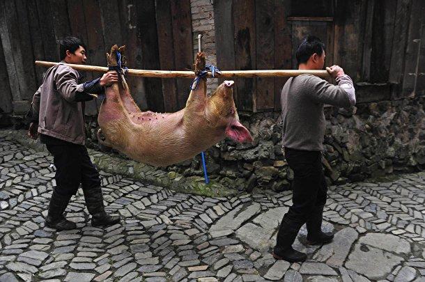 Представители народности Миао готовятся к празднику «Гузанг»