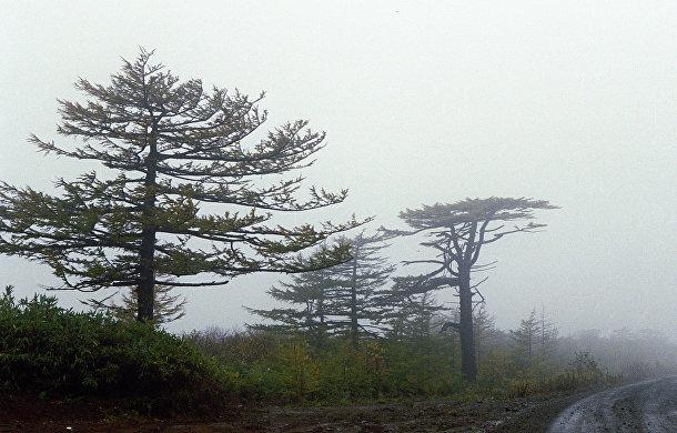 Остров Итуруп на Сахалине