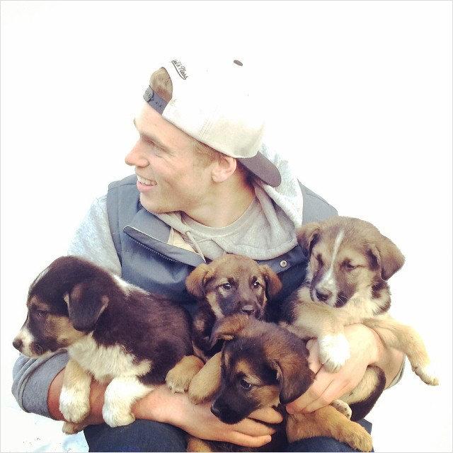 Гус Кенуорти с подобранными в Сочи щенками