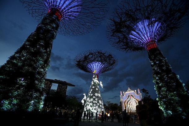Супердеревья в Сингапуре