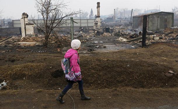 Последствия лесных пожаров в Хакасии