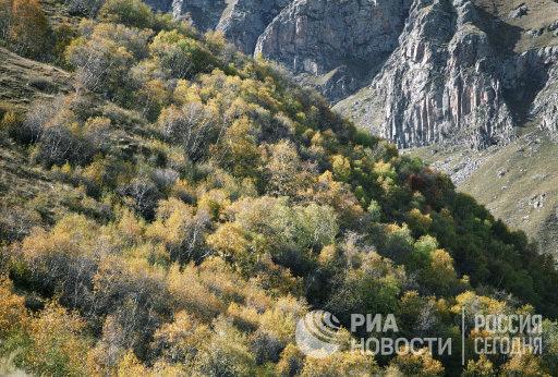 На южных склонах Большого Кавказа