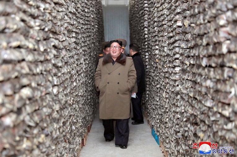 Северокорейский лидер Ким Чен Ын посещает рыбное хозяйство в районе Дунхэ