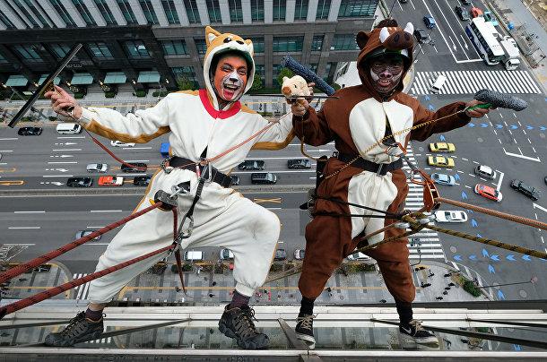 Мойщики окон, одетые в костюмы уходящего года собаки и наступающего года свиньи в Токио