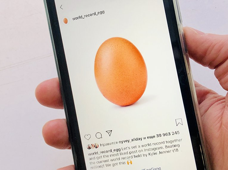 Аккаунт World_record_egg в Instagram
