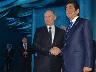 Президент РФ Владимир Путин и премьер-министр Японии Синдзо Абэ во время совместного осмотра Приморского океанариума на острове Русский