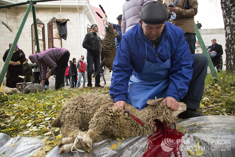 Мусульманин разделывает барана в день праздника жертвоприношения Курбан-Байрам возле соборной мечети Ляля Тюльпан в Уфе