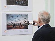 Открытие выставки работ конкурса им. Стенина в Буэнос-Айресе