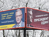 Предвыборные плакаты президента Украины Петра Порошенко и бывшего министра обороны Украины Анатолия Гриценко