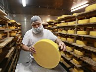 Производство сыра в России