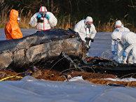 Обломки самолета, на котором летела Наталья Филева