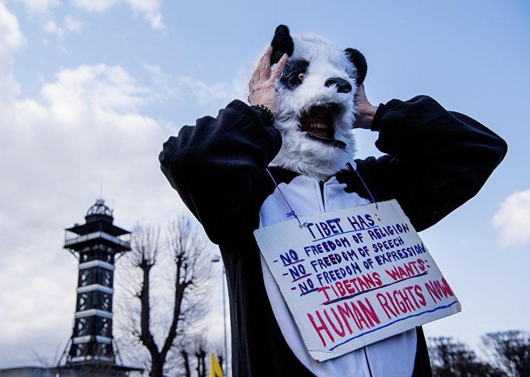 Протесты против пандовой дипломатии Китая в Копенгагене, Дания. Активист в костюме панды заявляет, что Китай нарушает права человека