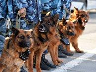 Репетиция парада Победы в Челябинске