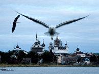 Жизнь на Соловецком архипелаге